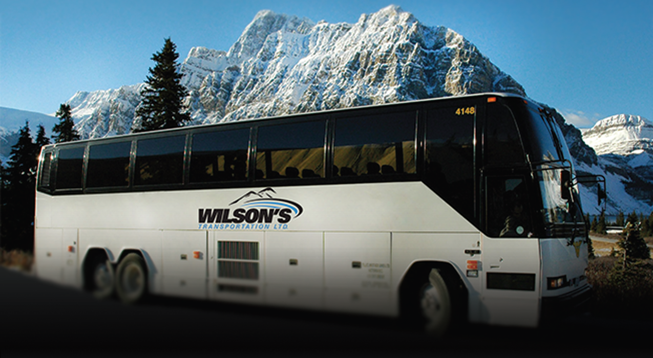 Wilsons - Images - Bus_BUS AD